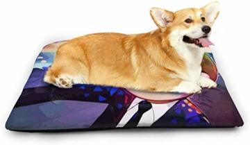 Chimmy95 Anime Cartoon Rick Morty Hundebett Matte Weiche Kiste Pad Waschbar rutschfeste Matratze für Hunde und Katzen Zwinger Pad - 2