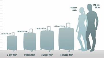 HAUPTSTADTKOFFER - Alex - 2er Koffer-Set Hartschale glänzend, TSA, 65 cm, 74 Liter, Waldgrün-Silber - 2