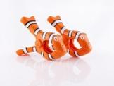 Strandtuch-Klammern - Clownfisch - 1
