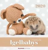 Igelbabys 2020 - Postkartenkalender (16 x 17) - Hedgehogs - zum aufstellen oder aufhängen - Geschenkidee - Tierkalender - Gadget - 1