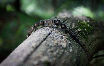 Nature is Adventure Mehr Biss mit 33 Zähnen aus Carbonstahl Handkettensäge inkl. Gürteltasche - Premium Survival AST-Säge Gartensäge für Camping, Garten & Outdoor-Zubehör - 6