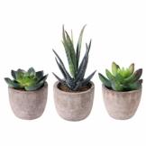OUNONA 3 Stücke Künstliche Sukkulenten Pflanzen mit Töpfen Tischdeko Haus Balkon Büro Deko - 1