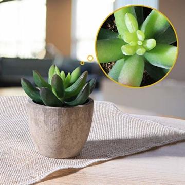 OUNONA 3 Stücke Künstliche Sukkulenten Pflanzen mit Töpfen Tischdeko Haus Balkon Büro Deko - 3