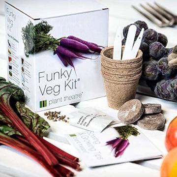 Plant Theatre Flippiges Gemüse-Kit - 5 außergewöhnliche Gemüse zum Selbstzüchten - 2