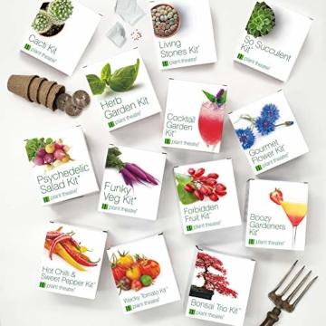 Plant Theatre Flippiges Gemüse-Kit - 5 außergewöhnliche Gemüse zum Selbstzüchten - 4
